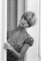 Goldie Hawn picture G304803