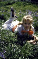 Hayley Mills picture G305336