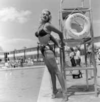 Jayne Mansfield picture G306479