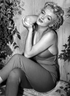 Marilyn Monroe poster G309210