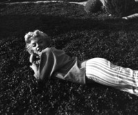 Marilyn Monroe picture G309218