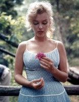 Marilyn Monroe picture G309243