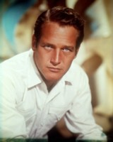 Paul Newman picture G310515