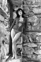 Raquel Welch picture G310761