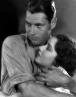 Richard Arlen picture G310788