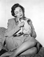 Ruth Roman picture G311159