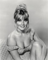 Sharon Tate picture G311254
