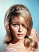 Sharon Tate picture G311258