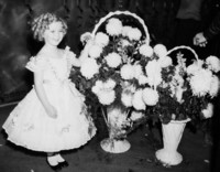 Shirley Temple picture G311355