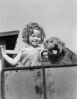 Shirley Temple picture G311361