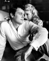 Tony Curtis picture G311945