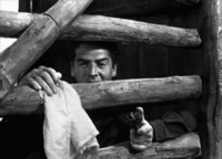 Victor Mature picture G312127