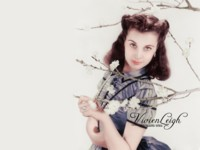 Vivien Leigh picture G312274