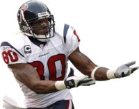 Andre Johnson picture G327129