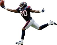 Andre Johnson picture G312651