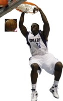 Brandon Bass picture G329140