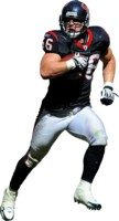 Brian Cushing picture G312805