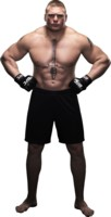 Brock Lesnar picture G312820