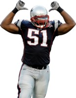 Jerod Mayo picture G330609