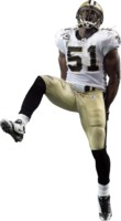 Jonathan Vilma picture G313613