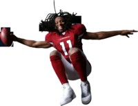 Larry Fitzgerald picture G313785