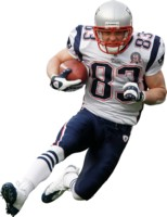Wes Welker picture G314490