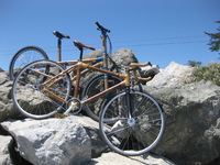 Bicycle picture G316282