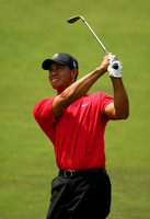 Tiger Woods picture G316543