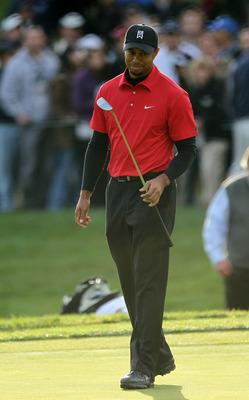 Tiger Woods poster G316545