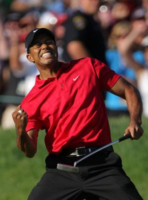 Tiger Woods poster G316546