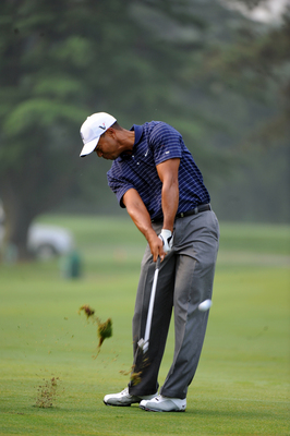 Tiger Woods poster G316547
