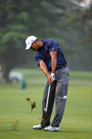 Tiger Woods picture G316674