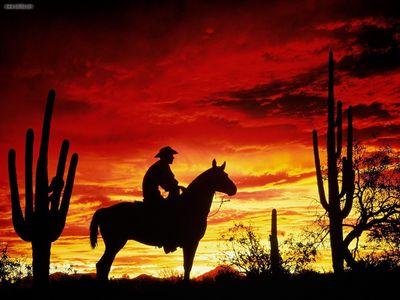 cowboy poster G316905