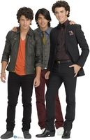 Jonas Brothers picture G316967