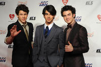 Jonas Brothers picture G316973