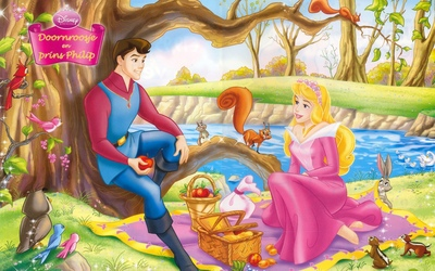 Disney Princess poster G317231