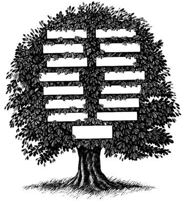 Family Tree poster G317594