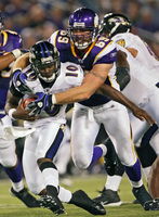 Minnesota Vikings picture G318288