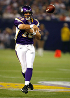 Minnesota Vikings picture G318294