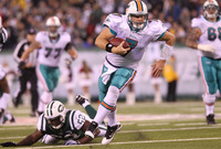 Miami Dolphins picture G318317