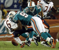 Miami Dolphins picture G318316