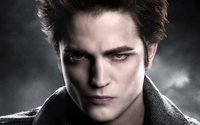 Edward Cullen picture G318544