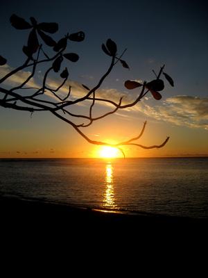 Sunset poster G318595