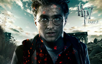 Harry Potter picture G322160