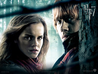 Harry Potter picture G322161