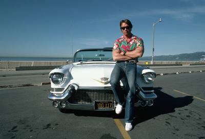 Arnold Schwarzenegger poster G322267