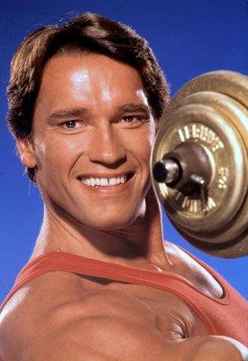 Arnold Schwarzenegger poster G322269