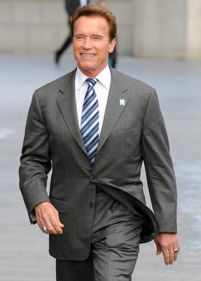Arnold Schwarzenegger poster G322276