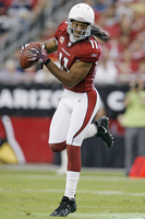 Larry Fitzgerald picture G326732
