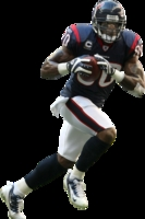 Andre Johnson picture G327123